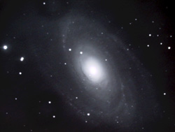 M81 (imaged by Kirby Benson)